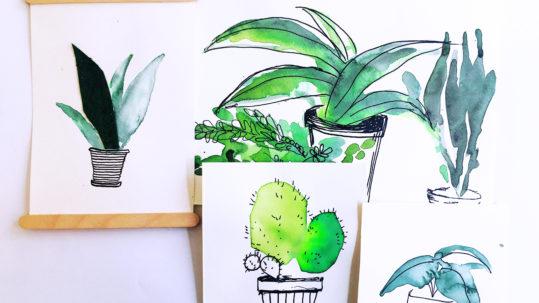 Kinderkunsthaus_Pflanzen